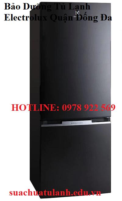 Bảo Dưỡng Tủ Lạnh Electrolux Quận Đống Đa